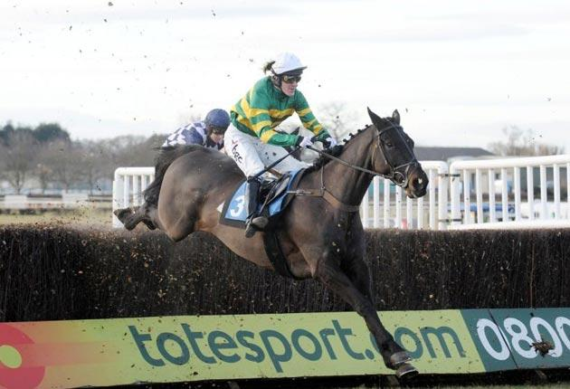 Alfie Sherrin can fulfil the promise of a light career over fences in the Midlands Grand National at Uttoxeter this afternoon