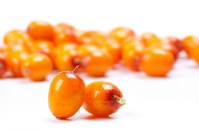 Sea buckthorn berries, a highly acidic, bitter fruit raw, is touted as the next trending ingredient in fine dining restaurants.