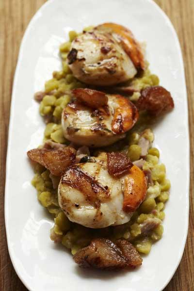 Griddled scallops with ham hock and split peas