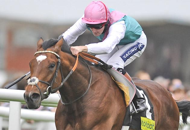 Tom Queally could make the running on Frankel in Saturday's 2,000 Guineas