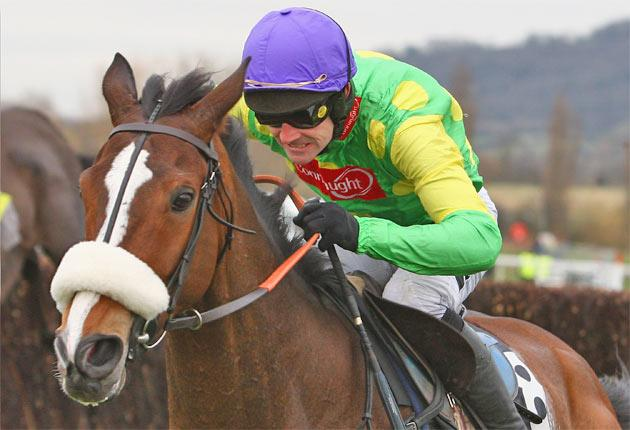 Kauto Star tops the bill in the Guinness Gold Cup at Punchestown today