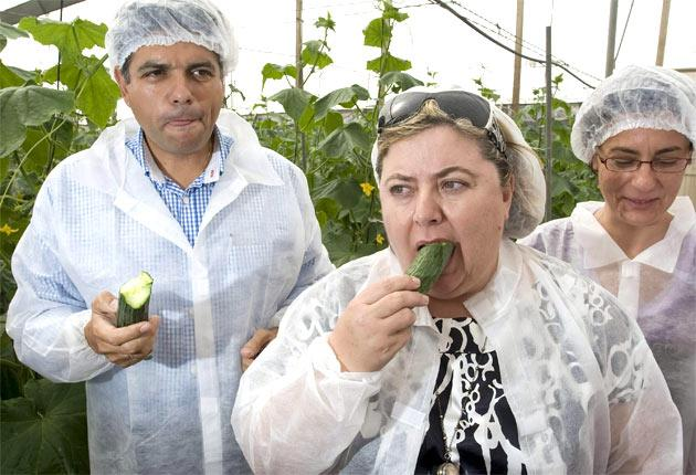 Clara Aguilera, the Minister for Agriculture of the Andalusian regional government, eats a cucumber in an attempt to prove they are safe