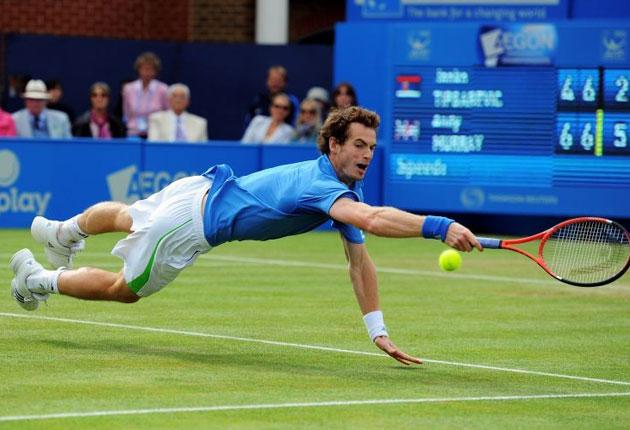 A tough draw means Andy Murray will have his hands full if he is to win at SW19