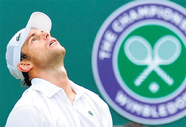 Andy Roddick feels the pain of defeat yesterday