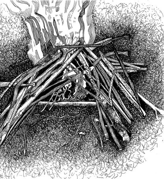 Up in smoke: There's no shame in using matches to get your fire going