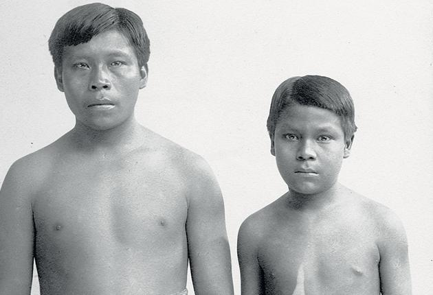 Omarino and Ricudo were two Witoto slaves brought to Britain in 1911; they were among thousands who suffered brutal treatment and injuries during South America's rubber boom