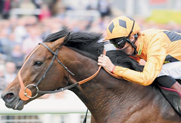 Canford Cliffs, who won five consecutive Group One races before his defeat by Frankel, was also victorious at Royal Ascot in three consecutive seasons