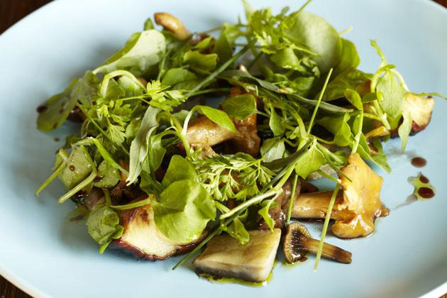 Mushroom salad is a great way to serve and show off a selection of mushrooms