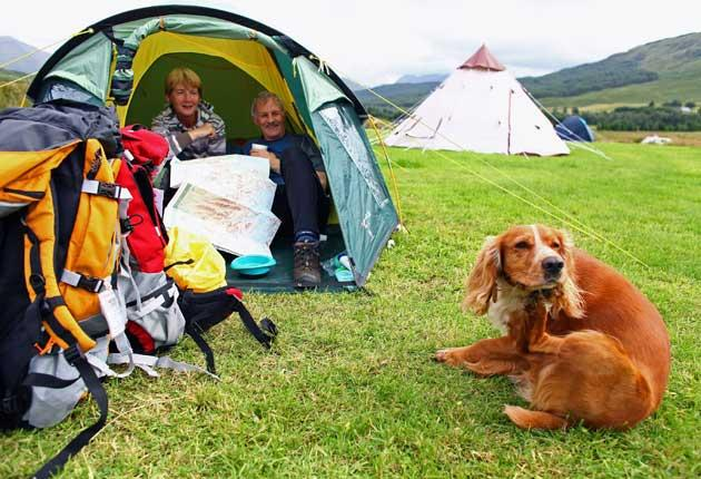 Field trip: Budget conscious holiday makers are spending the whole summer camping, commuting into work and packing their pets too