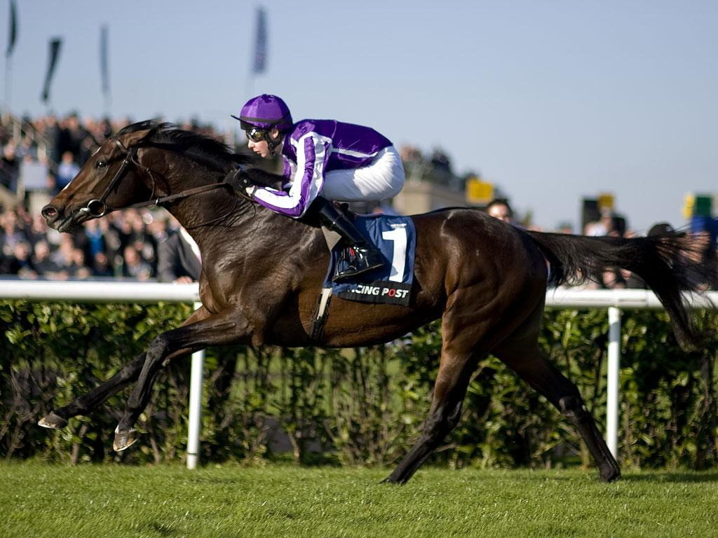 Camelot responds to jockey Joseph O'Brien by quickening readily to streak away to a comfortable victory in the Racing Post Trophy at Doncaster