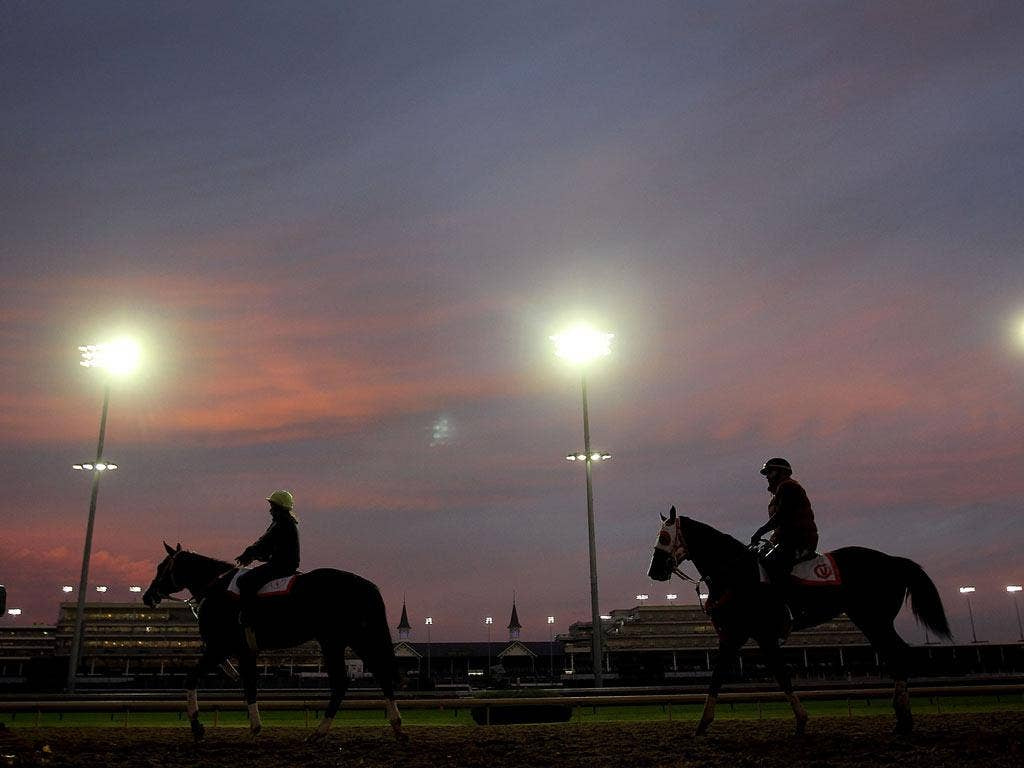 Horses exercise in the early-morning light at Churchill Downs yesterday