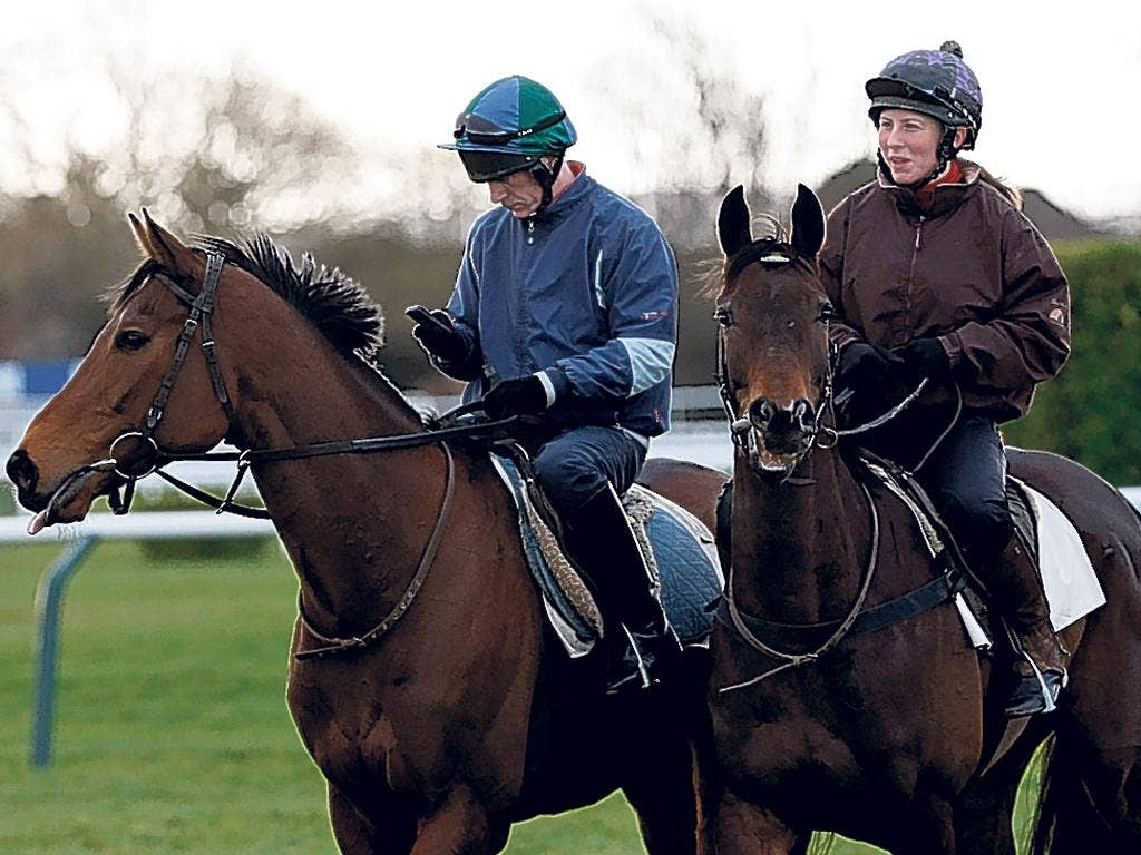 Muirhead, right, unexposed over fences, looks a value selection at 25-1
