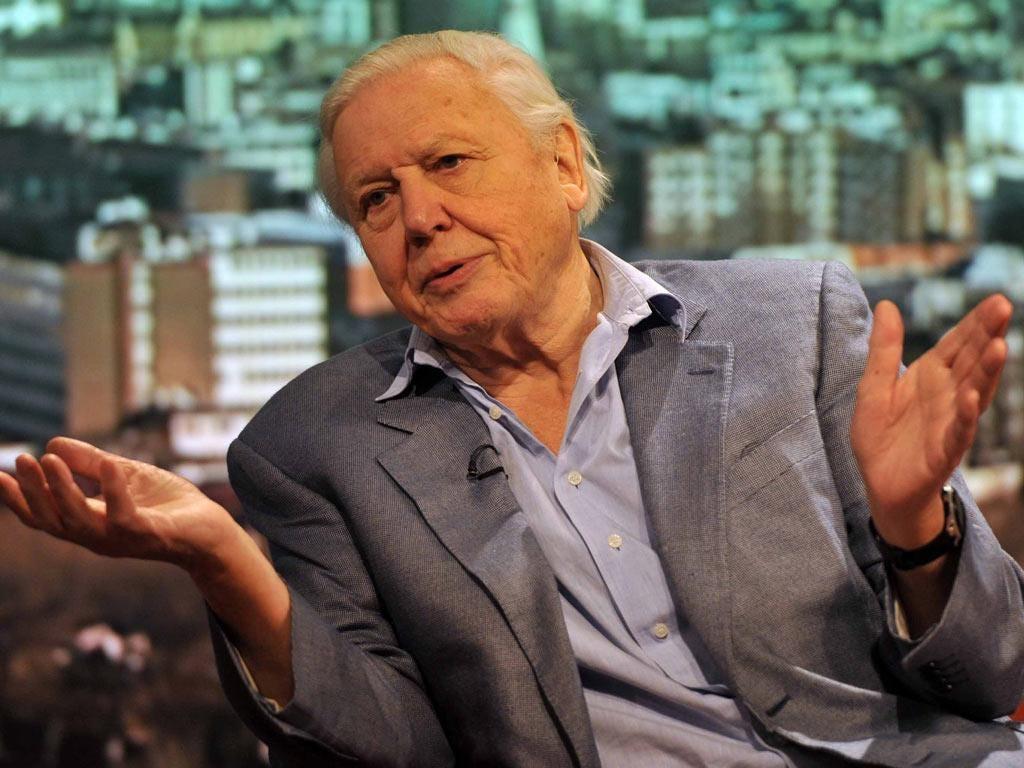 Sir David Attenborough: 'It's not falsehood and we don't keep it secret either'
