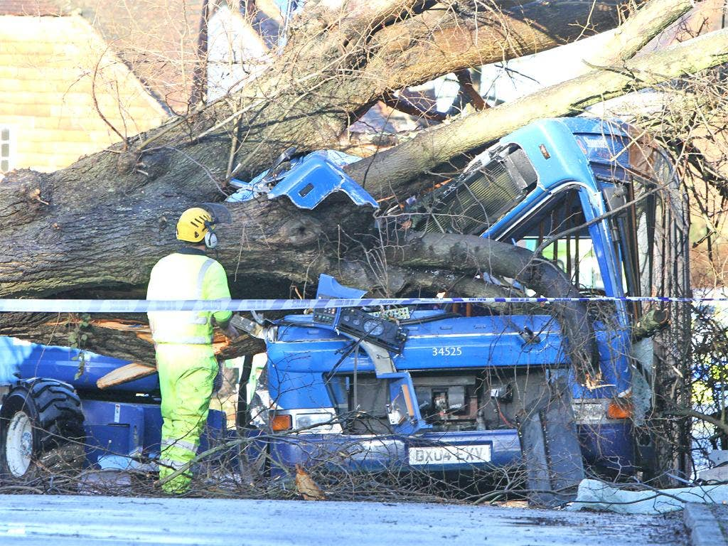 Abus is crushed by a tree in Witley, Surrey