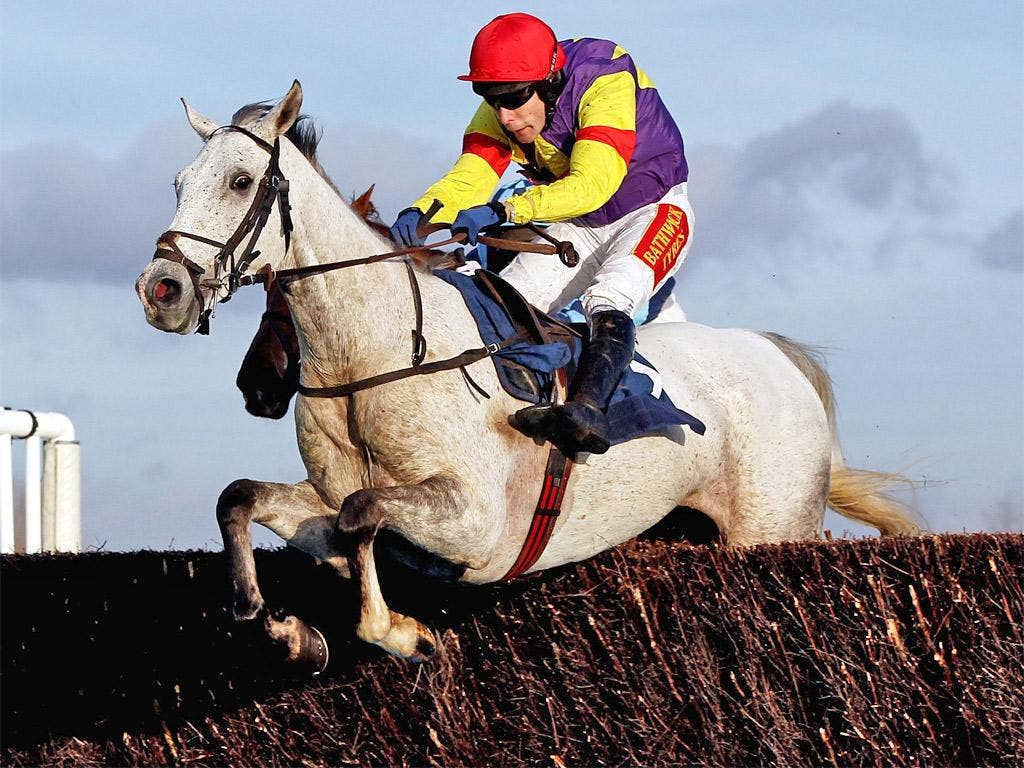 Grands Crus is unbeaten in three starts over fences this season