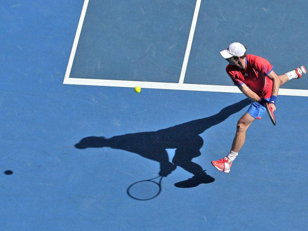 Andy Murray lost in straight sets to Novak Djokovic in last year's final at Melbourne Park