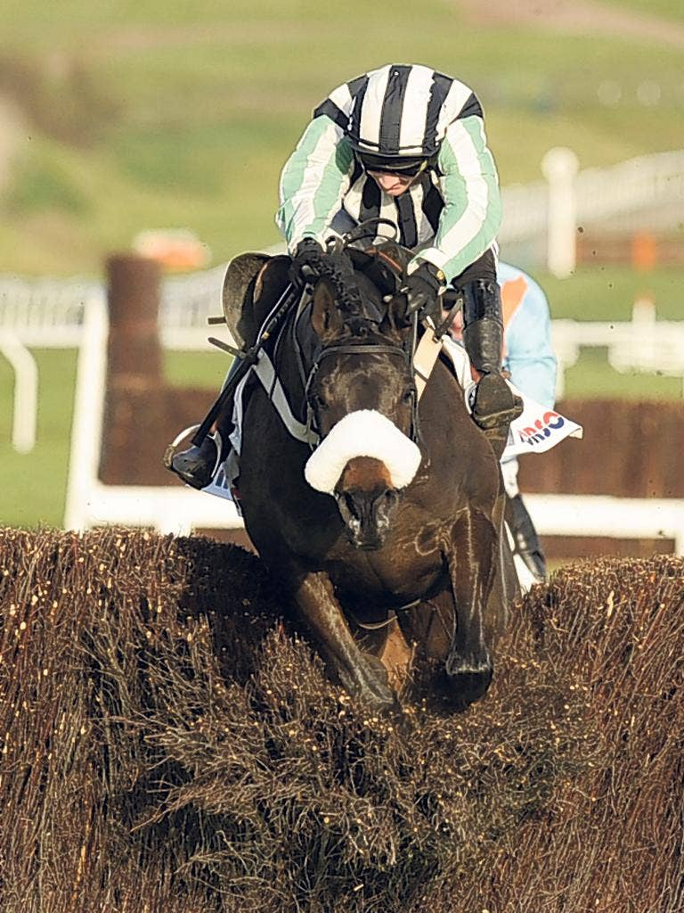 Dougie Costello and Midnight Chase crash through the last to win at Cheltenham in 2010