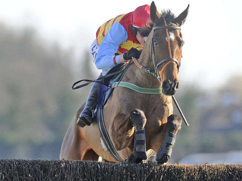 Hunt Ball has improved more than any other chaser this season, raised by 73lb in the handicap