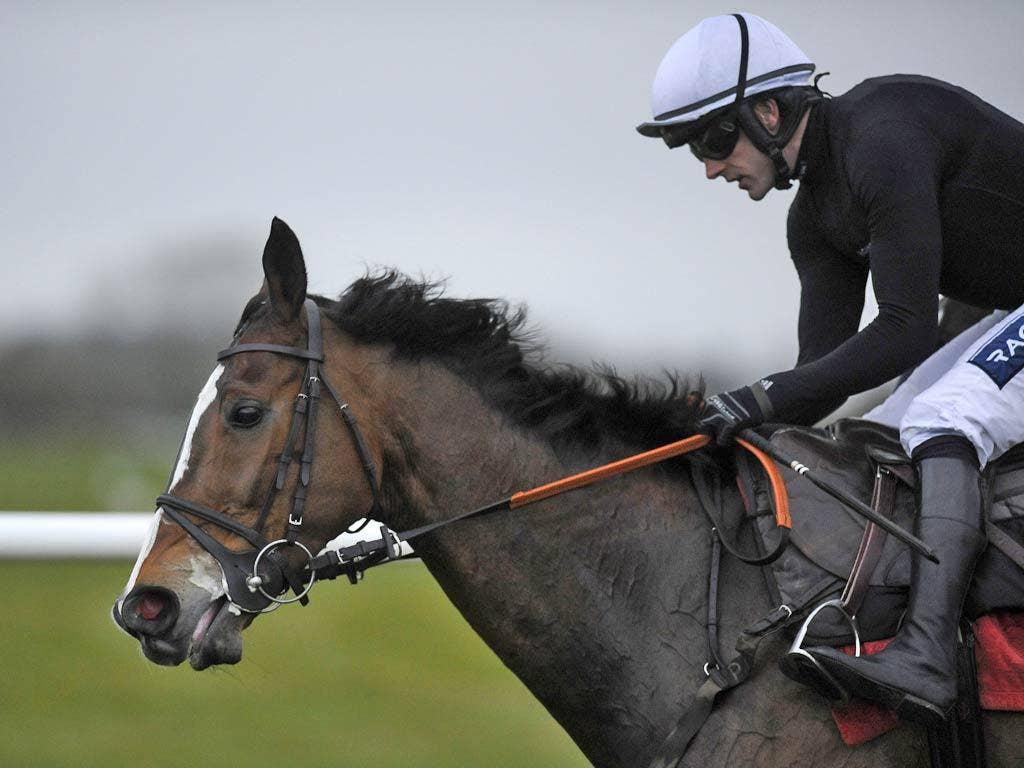 Kauto Star was feared a doubtful starter in Friday's showpiece event
