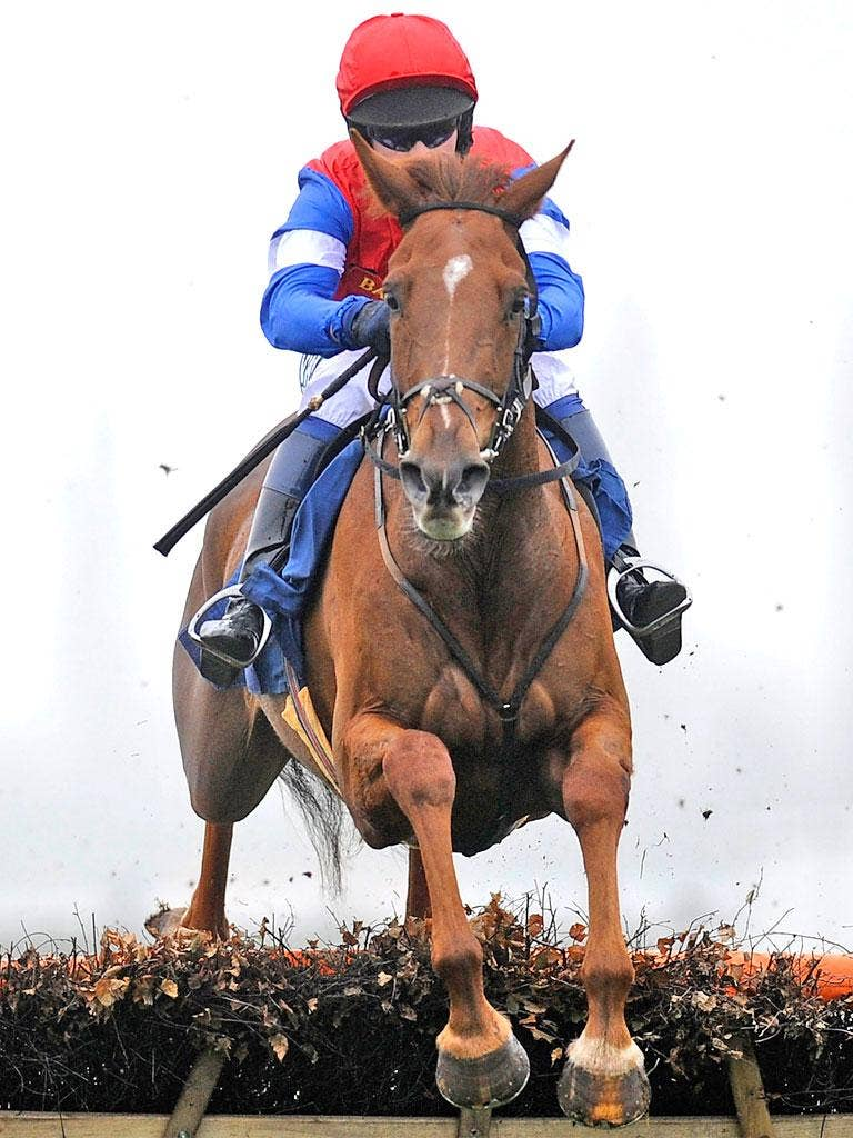 Chris Honour riding Poole Master at Newbury earlier this month