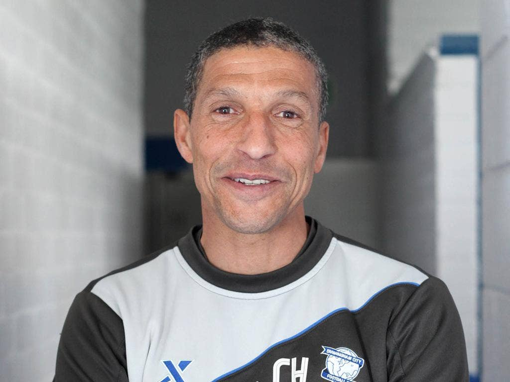 Chris Hughton has worked a mini-miracle at St Andrew's