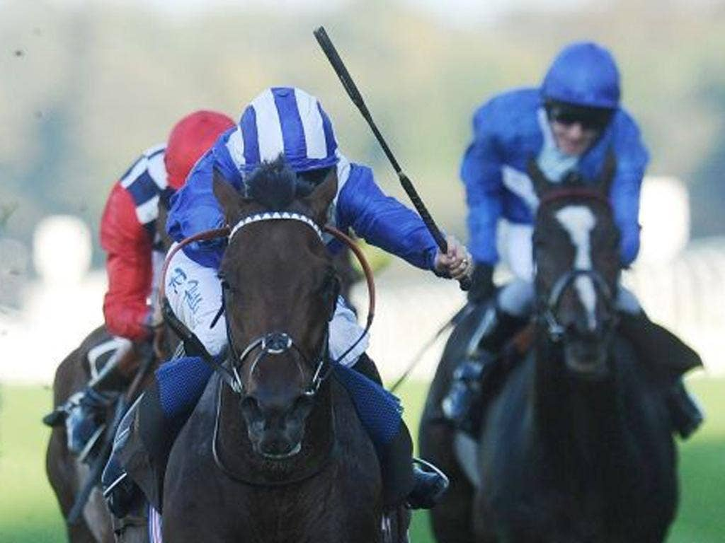 Thimaar (left) could show improvement in the Queen's Prize at Kempton