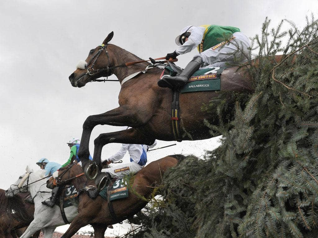 Final fence: The Grand National has been a treasured fixture for the BBC's live coverage for more than half a century
