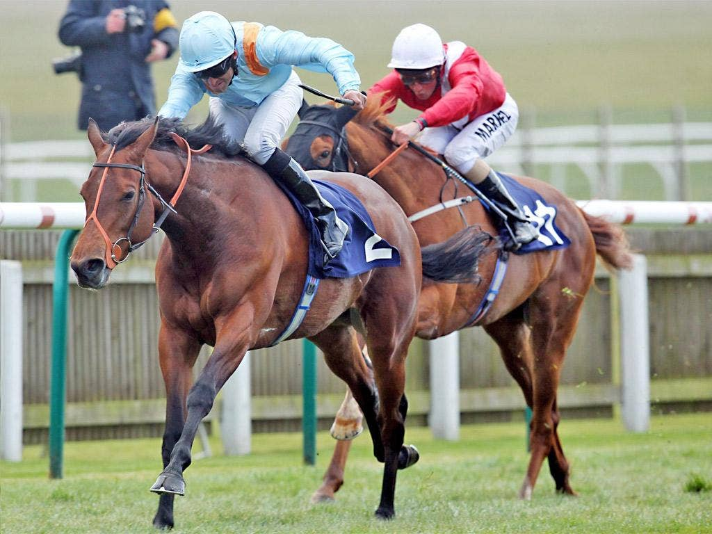 Esentepe causes a 28-1 surprise in Newmarket's Nell Gwyn yesterday