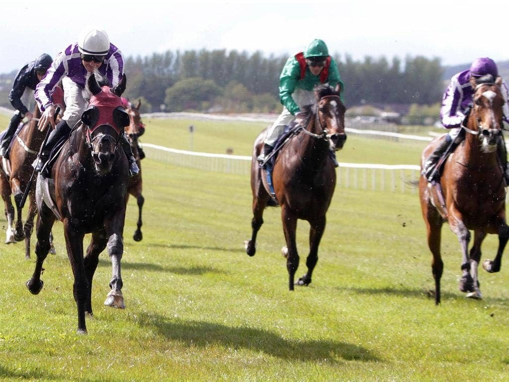 Joseph O'Brien on St Nicholas Abbey (right) fails to peg back his stablemate Windsor Palace (red blinkers) at the Curragh yesterday