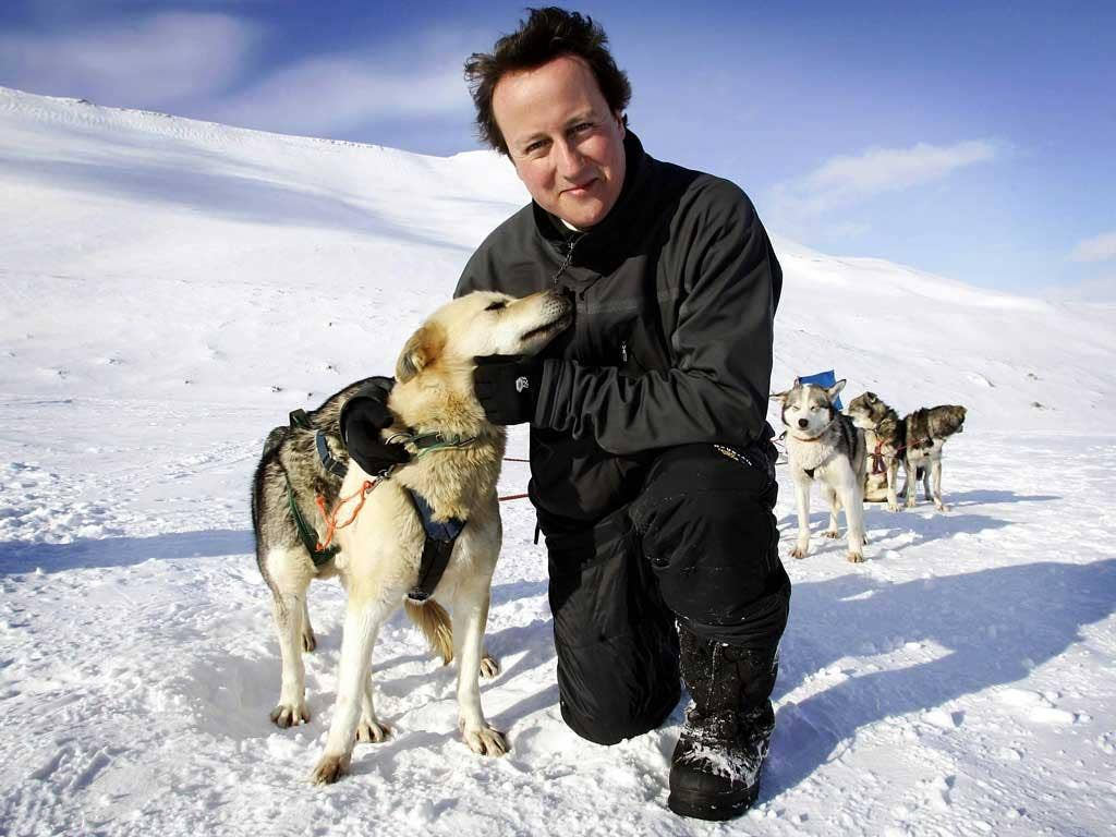 Happy days: David Cameron in Svalbard, Norway on a 2006 trip designed to expound his green credentials