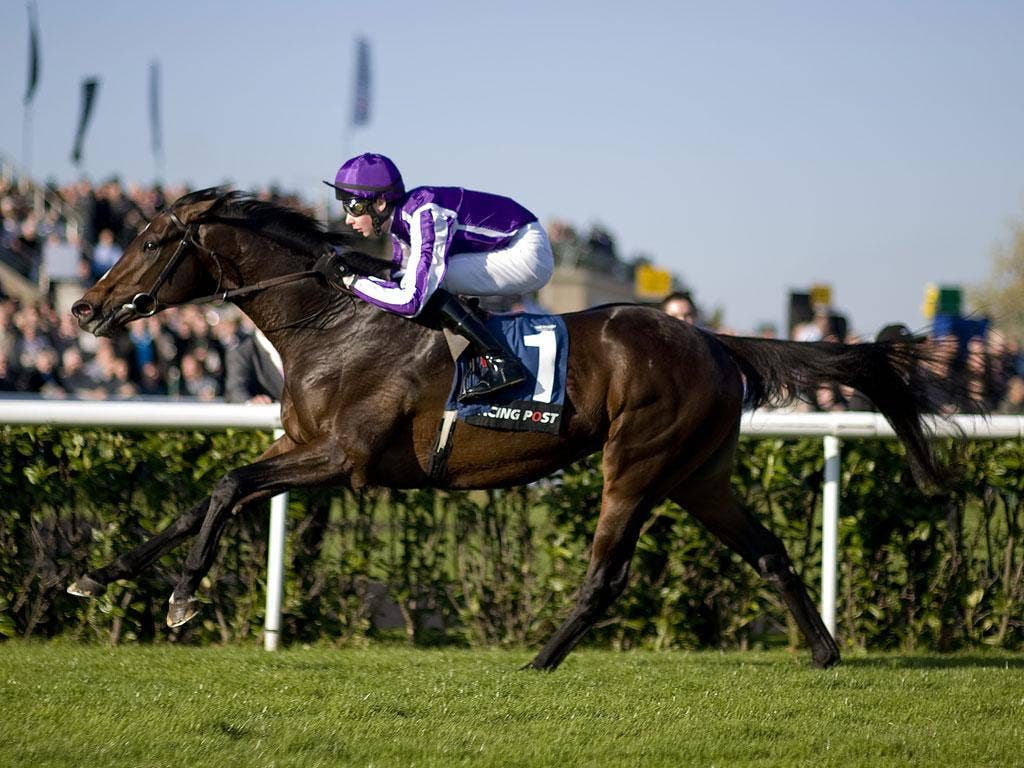 Camelot is a 4-7 favourite to land the Derby today