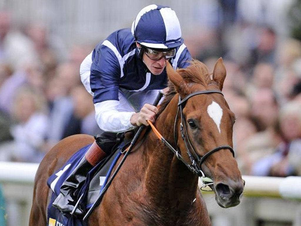 Strong Suit has not raced at six furlongs since his juvenile days