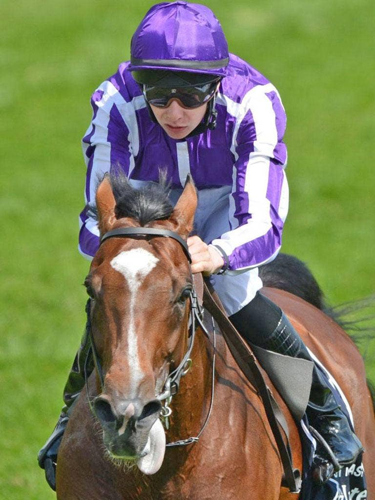 St Nicholas Abbey has the stamina to test Frankel