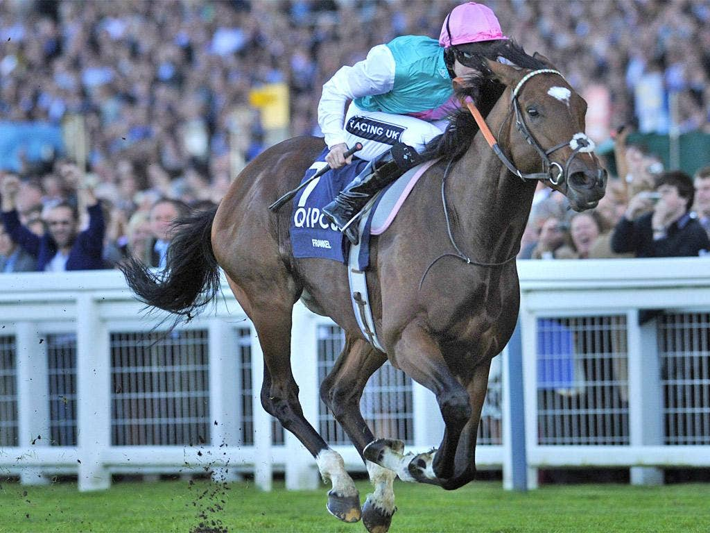 Staying power: Tom Queally on Frankel