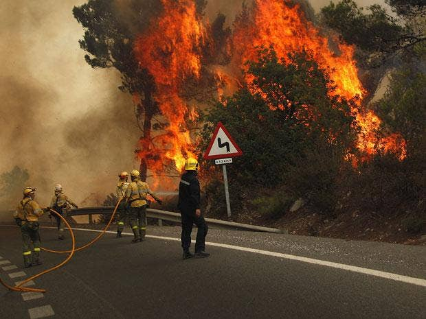 Firefighters try to extinguish a fire in forest on the road between Marbella and Monda in Ojen