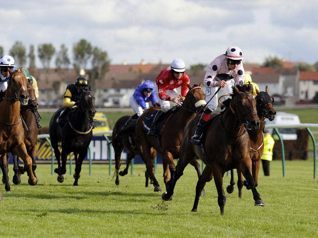 Ayr missile: Pat Smullen riding Captain Ramius goes on to win the Gold Cup