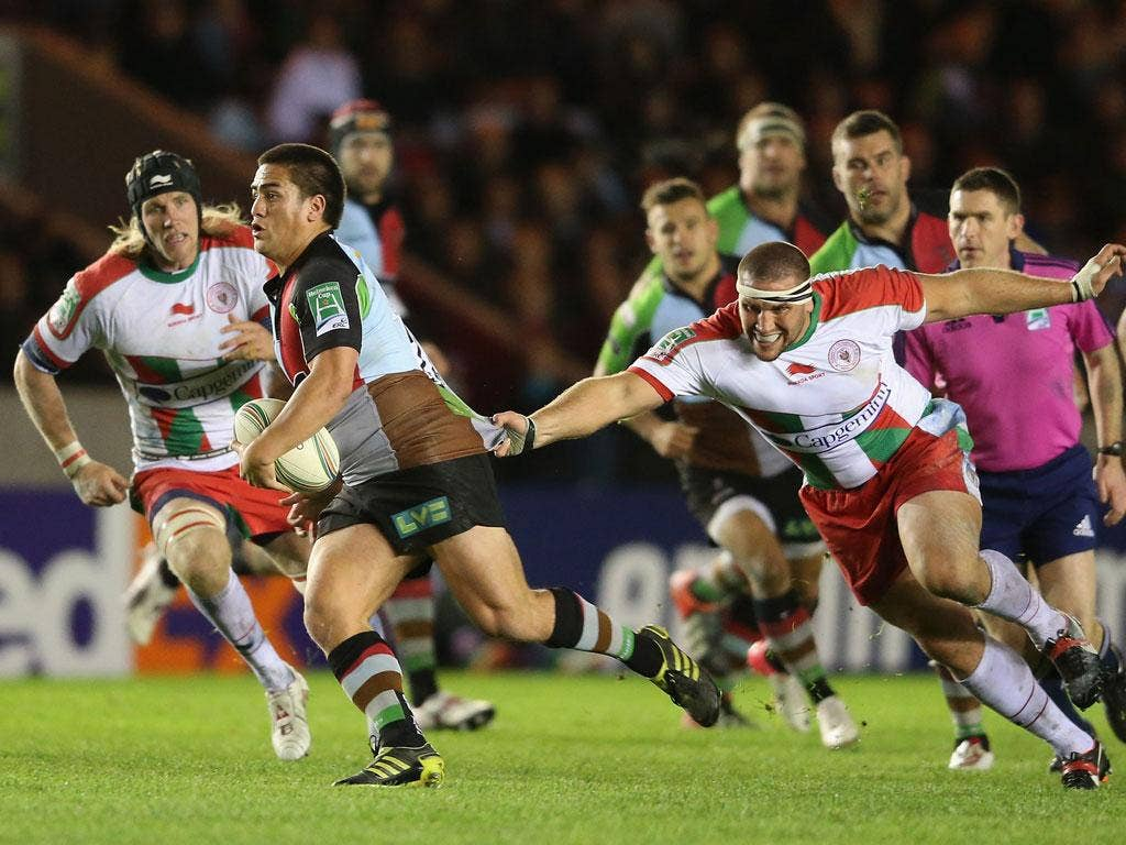 Putting on the ritz: Ben Botica of Harlequins breaks with the ball during their 40-13 victory over Biarritz at the Stoop last night