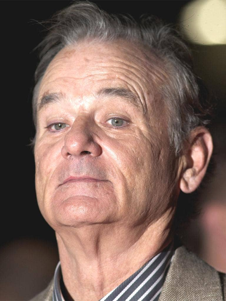 This photo is proof that this photo of Bill Murray was actually taken
