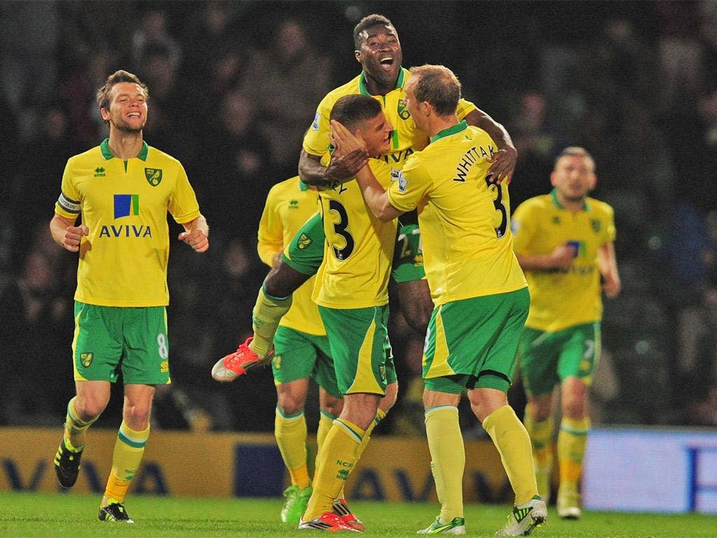 The Norwich players celebrate with Alex Tettey after his shot was deflected in by Tottenham's Jan Vertonghen