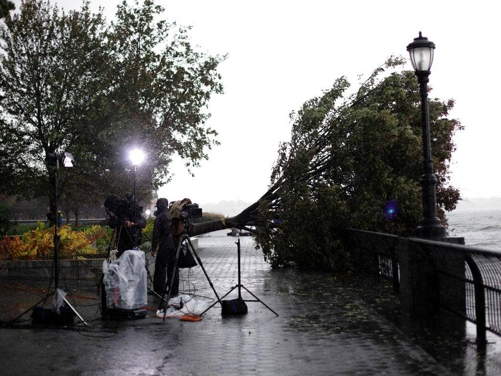 Blown away: Storm damage at Battery Park in lower Manhattan
