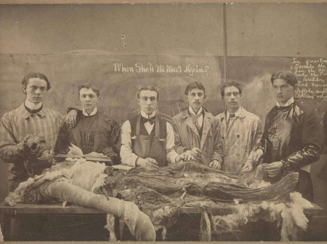 Victorian medical students learn to make light of death