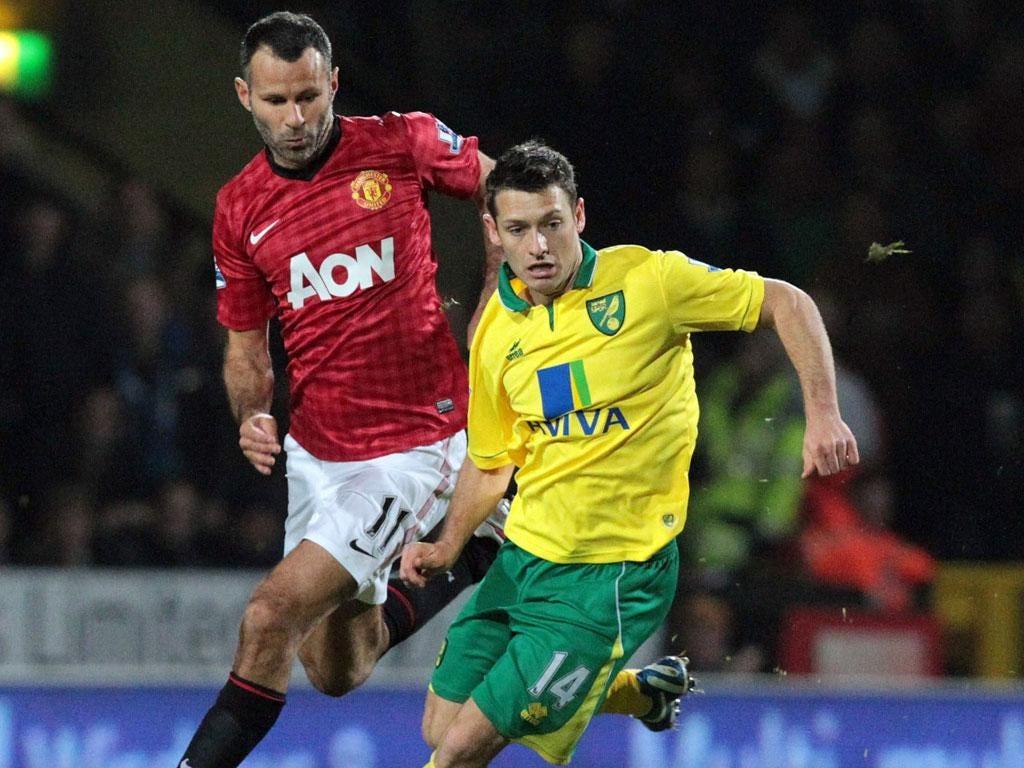 Key man: Wes Hoolahan has starred in the Norwich midfield this season