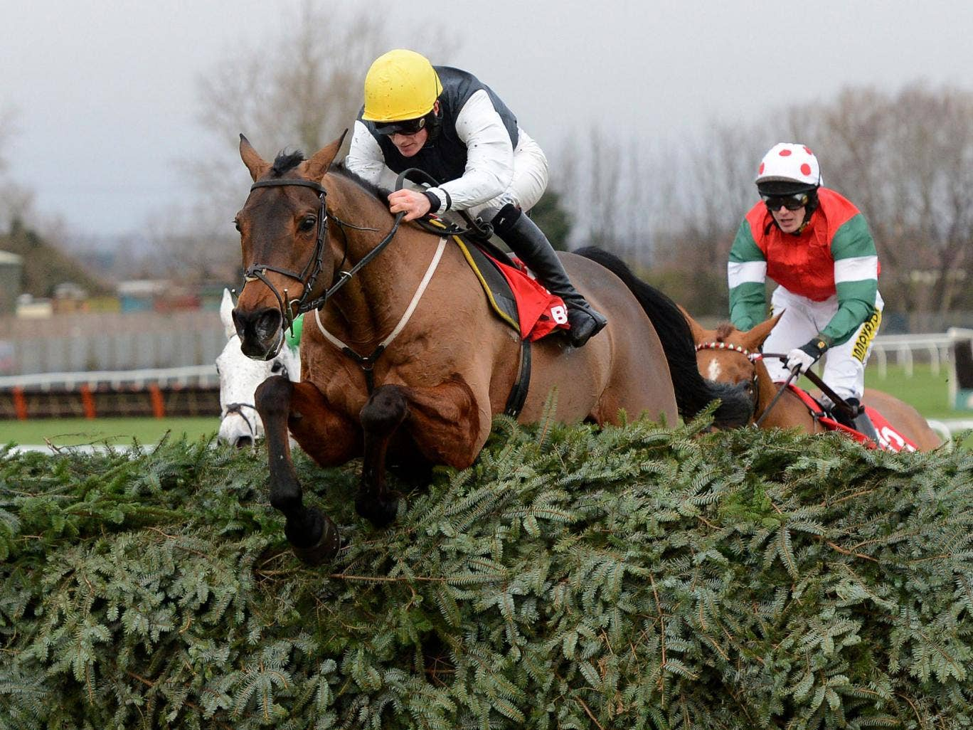 Jumping for joy: Sam Twiston-Davies steers Hello Bud over the final fence en route to victory in the Becher Chase