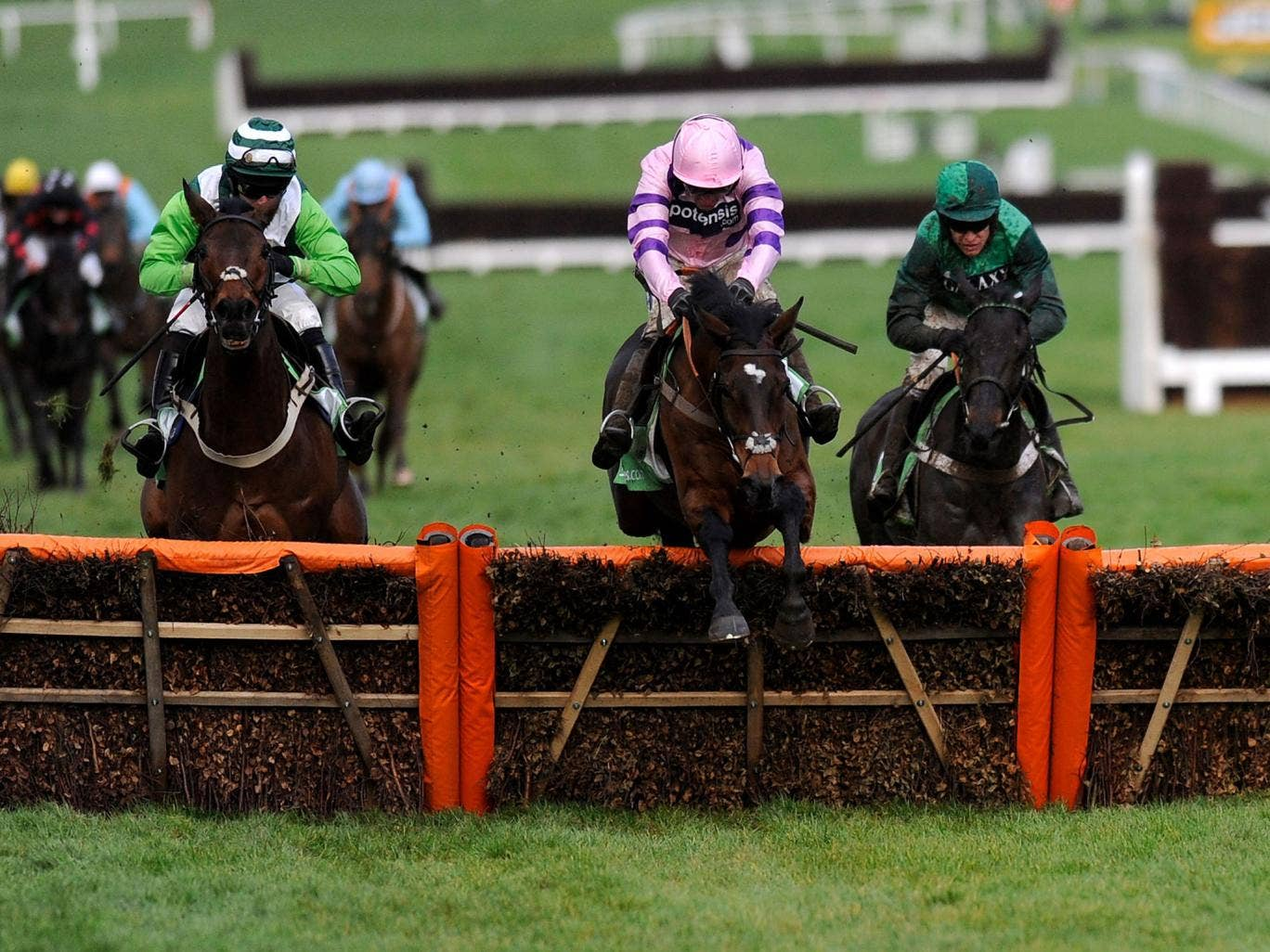 In the pink: Ruby Walsh and Zarkandar clear the last on their way to victory in the International Hurdle