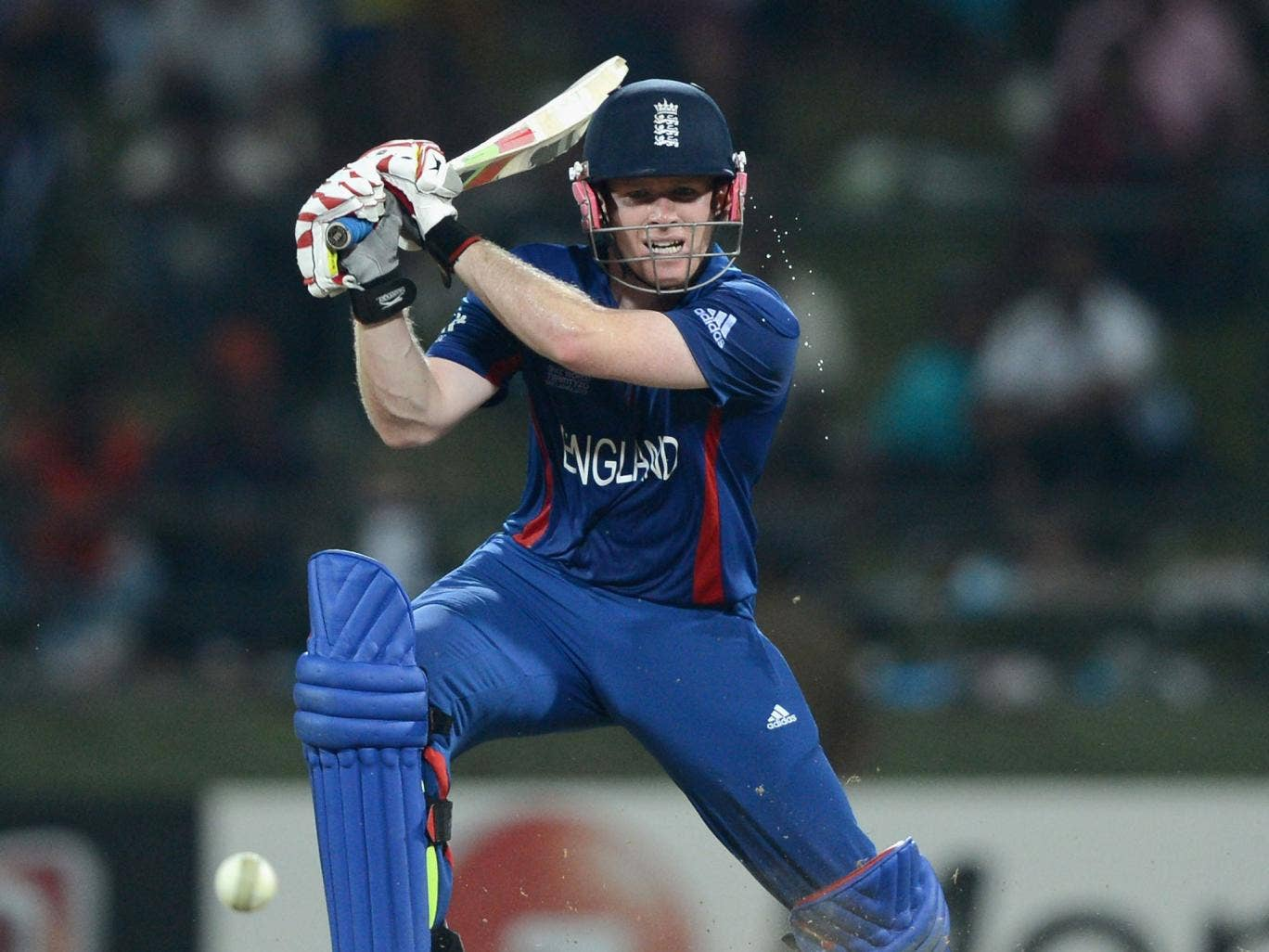 Captain's knock: Eoin Morgan led his side home with an unbeaten 49