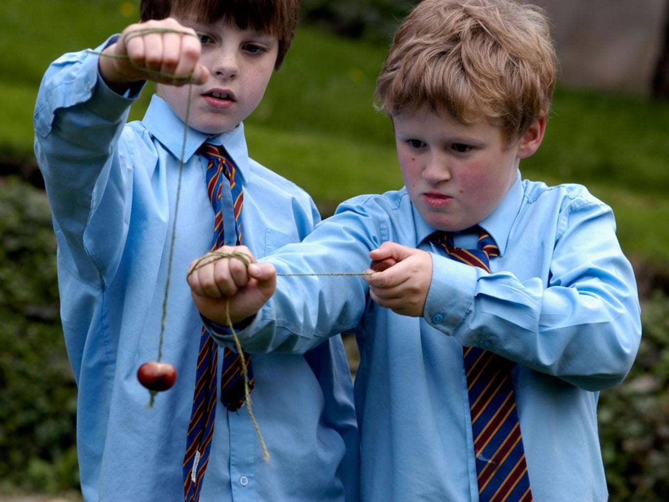 Traditional conker matches between schoolchildren are banned as they represent a safety risk