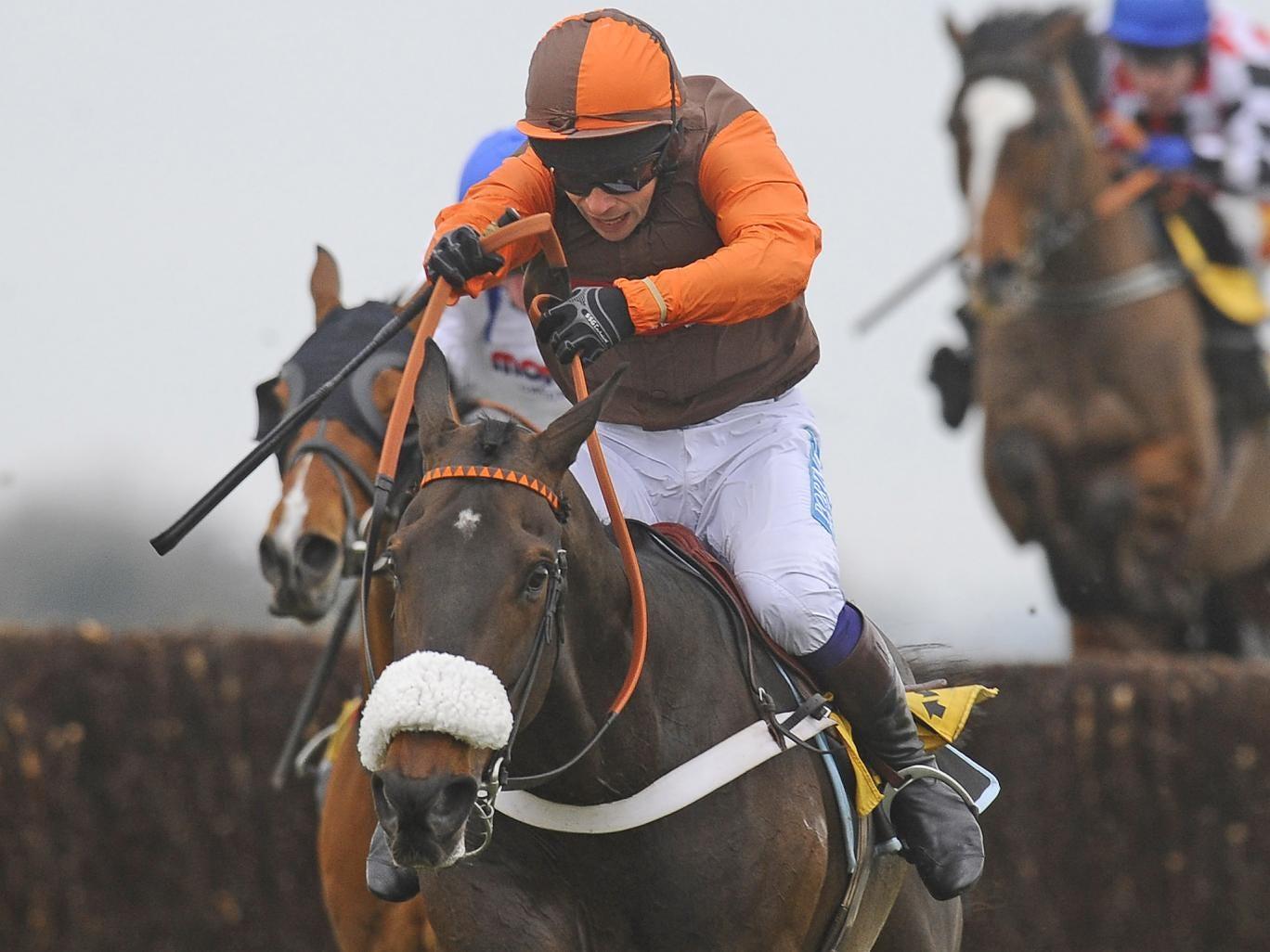 Sam Waley-Cohen riding Long Run at Newbury in February