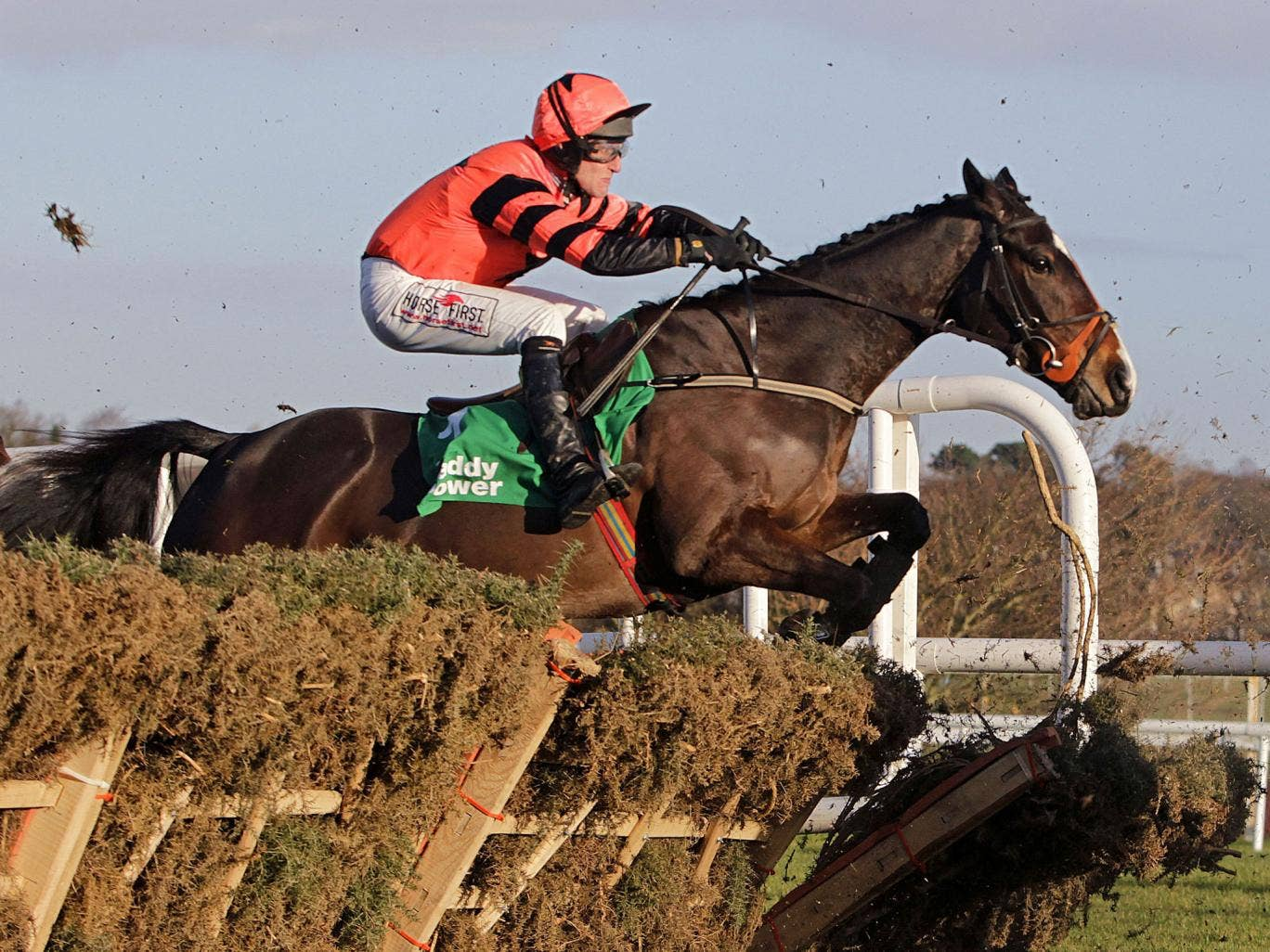 Jezki forges clear over the final flight at Leopardstown yesterday