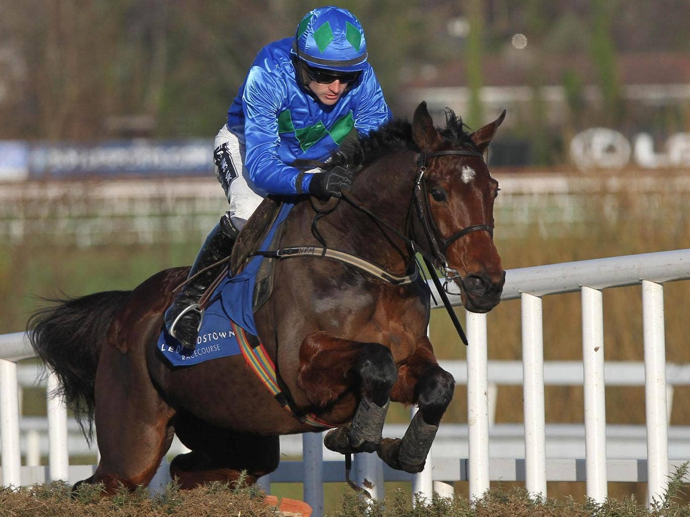 Hurricane Fly gained a bloodless victory in the Istabraq Festival Hurdle at Leopardstown on Saturday