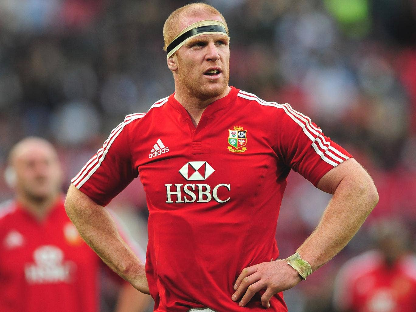 O'Connell captained the Lions in South Africa four years ago